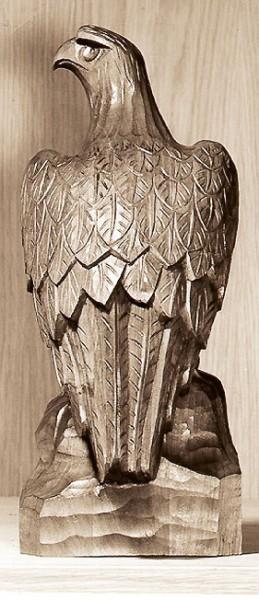 Adler Beute suchend